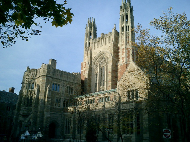 What's the diff between College, Graduate school, University?